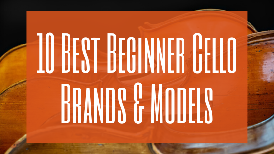 Best Beginner Cello Brands and Models