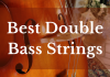 best double bass strings