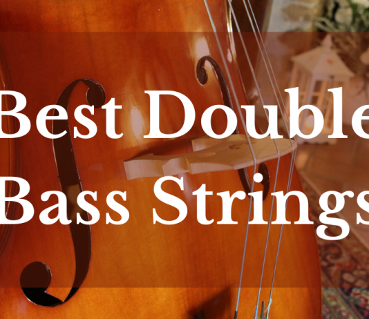 best double bass strings