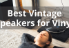 Best Vintage Speakers For Vinyl